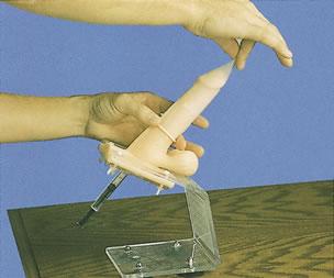 男性避孕套练习模型