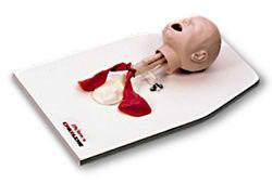 新生儿气管插管训练模型