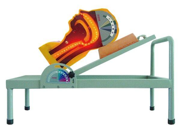 吞咽机制模型