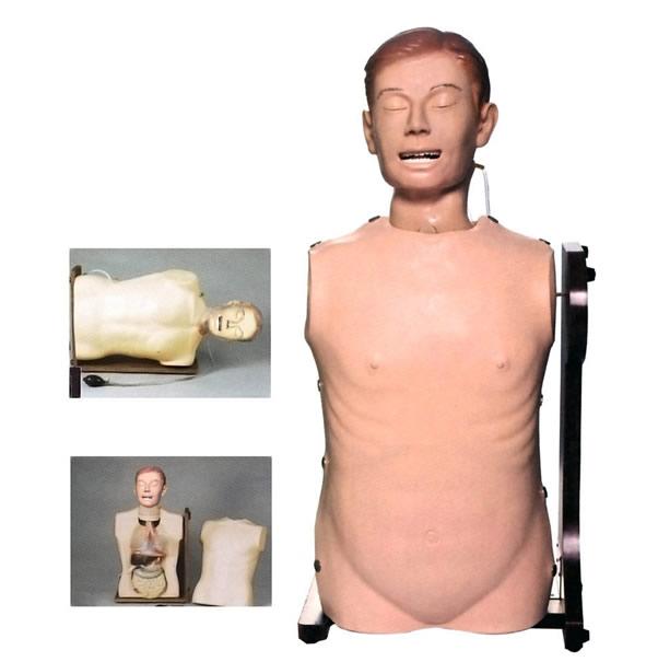 高级鼻胃管与气管护理模型