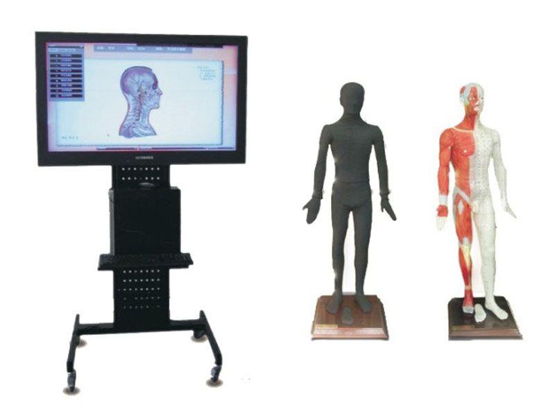 42寸多媒体人体针灸穴位交互数字平台