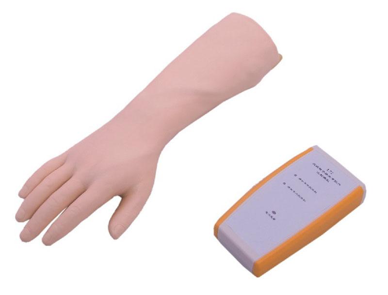腕关节穿刺模型