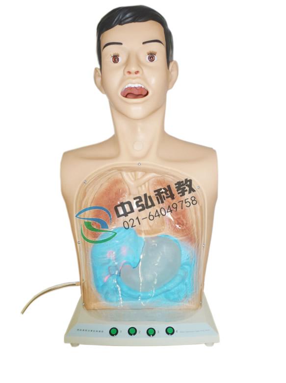 高级透明洗胃训练模型