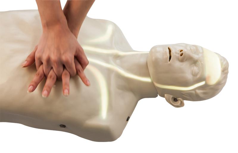 高级血流可视化复苏训练模拟人