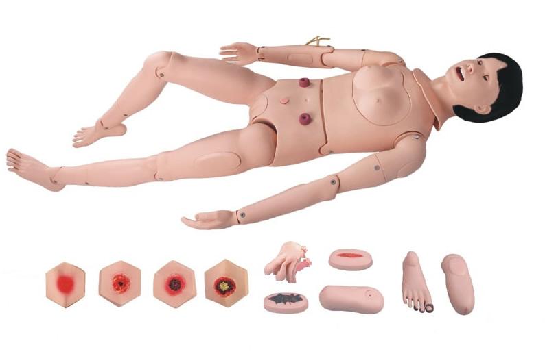 高级全功能护理人训练模型(女性)